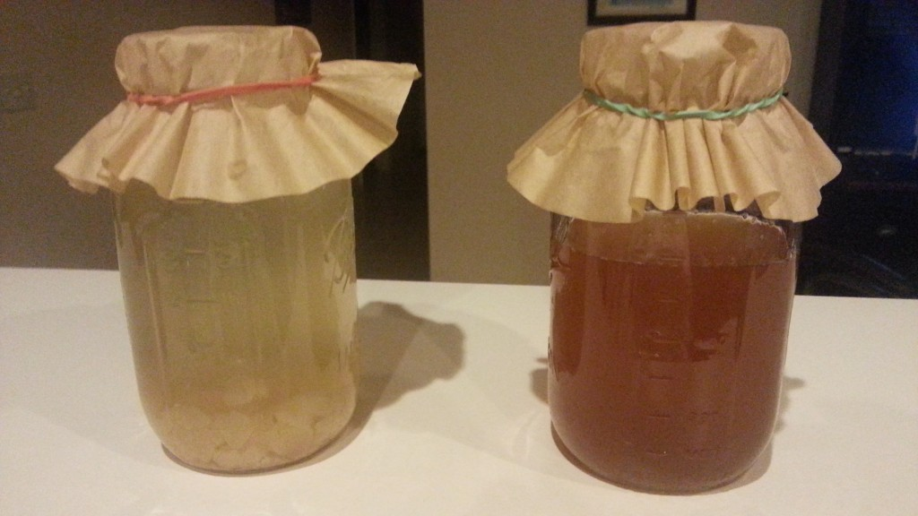 Before & After Water Kefir with Dried Figs.